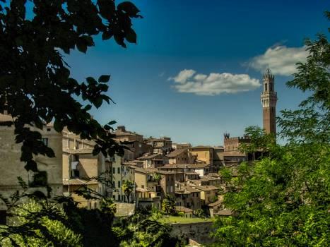 siena tuscany italy  #21233