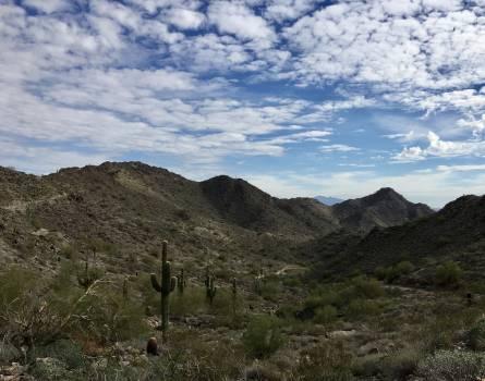 Mountain Range Landscape #213319