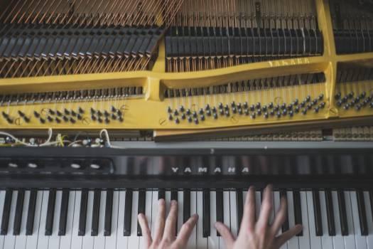 Musical instrument Keyboard instrument Piano Free Photo