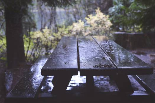 picnic table wood raining  #21395