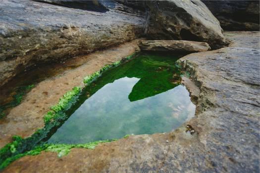 rocks water moss  Free Photo