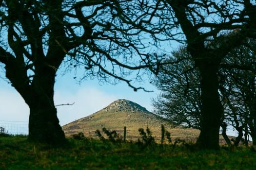 Knoll Landscape Mound Free Photo