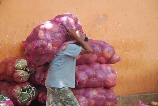 vegetables bag sac  #21529