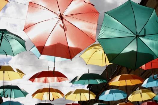 Umbrella Canopy Shelter #215334
