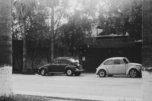 cars vintage oldschool  #21623