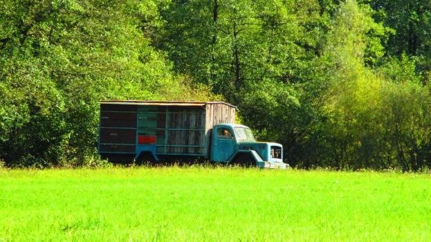 Mobile home Housing Trailer Free Photo