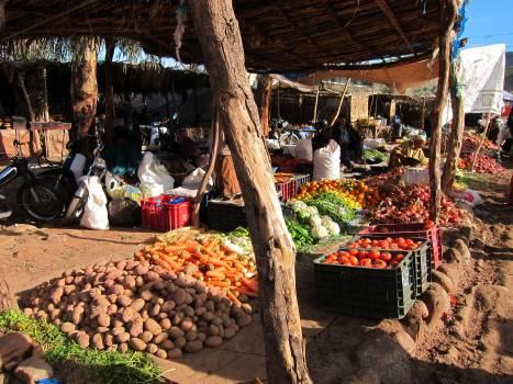 Marketplace Mercantile establishment Place of business #216725