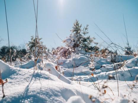 Snow Ice Mountain #216843