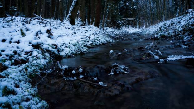Snow Weather Ice #217117