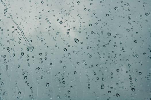 Condensation Water Wet Free Photo