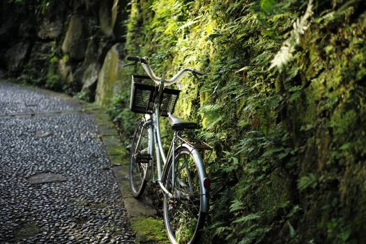 Bicycle Bike Bicycle seat Free Photo