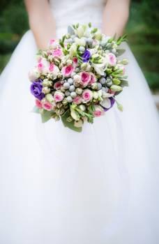 Bouquet Bride Abbess Free Photo