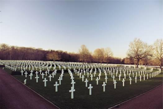 cemetery crosses tombstones  Free Photo