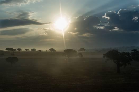 sunrise morning landscape  Free Photo