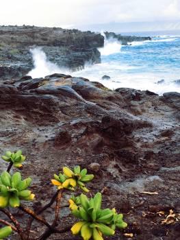 Water Landscape Ocean #221337