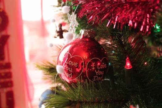 Christmas Decoration Season #221935