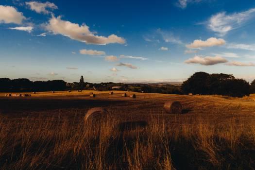 farm fields hay  Free Photo