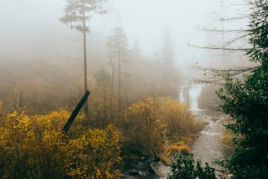 waterfall river stream  #22249