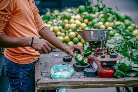 Fruit Food Seller #223441