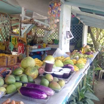 Marketplace Mercantile establishment Grocery store Free Photo