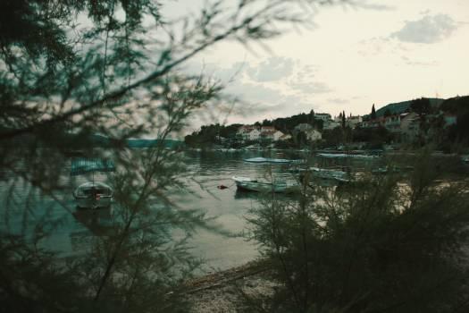 Shore Water Landscape #224108