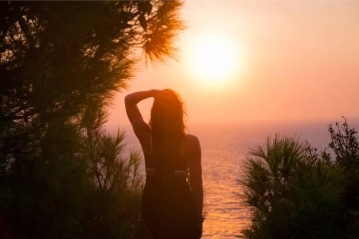 Sun Sunset Star #225312