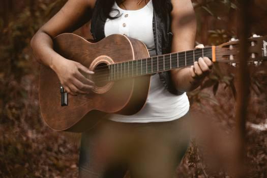 Acoustic guitar Guitar Stringed instrument #225939