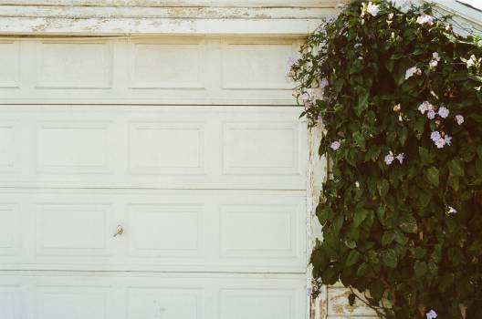 garage door white plant  #22776