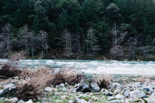 river stream water  #22884