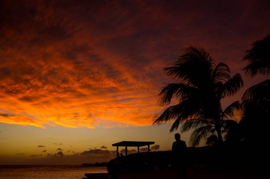Sun Sunset Beach #229076