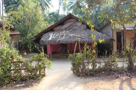 Roof Thatch Village Free Photo