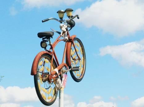 Cyclist Bicycle Bike Free Photo