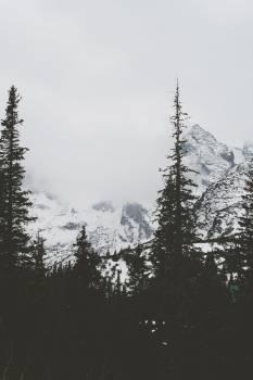 grey sky fog  Free Photo
