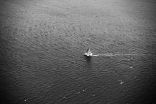 sailboat sea ocean  Free Photo