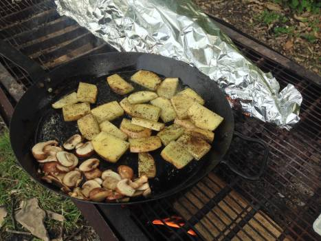 Barbecue Food Tasty Free Photo