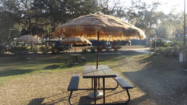 Parasol Beach Umbrella #232849