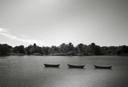 boats water lake  Free Photo