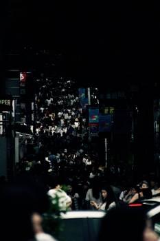 Traffic light Light Crowd Free Photo
