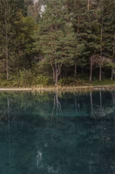 lake water reflection  #23619