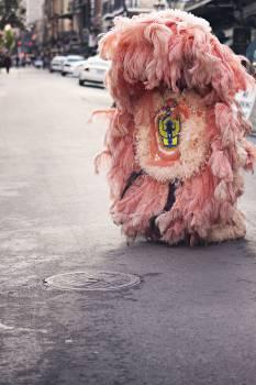 pink costume fur #23799