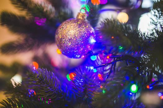 christmas tree lights #23861