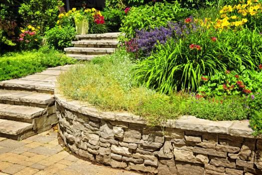 Stone wall Fence Wall #238991