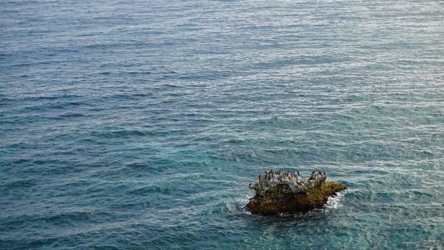 Ocean Sea Water #239159