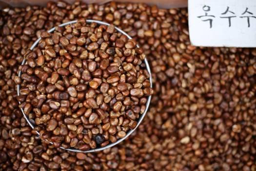 Coffee Bean Brown #239245