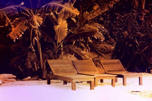 Marimba Percussion instrument Musical instrument Free Photo
