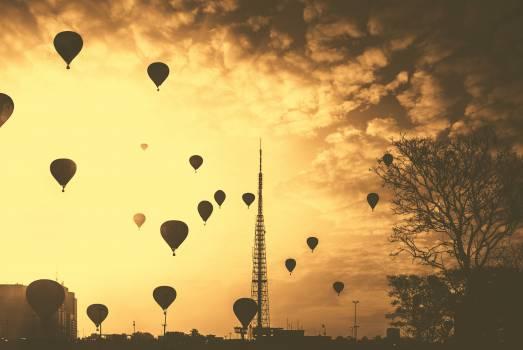 hot air balloons sunset dusk #24105