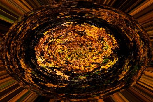 Round Icon Design Free Photo