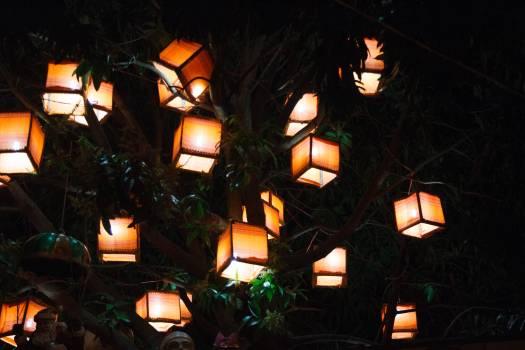 Lantern Lamp Jack-o'-lantern #241209