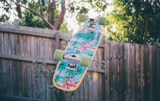 skateboard backyard fence Free Photo