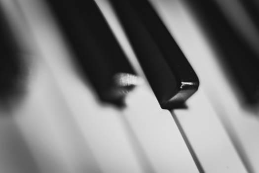 piano keys music Free Photo